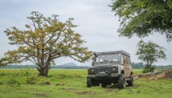 Does A Land Rover Fit Your Budget?
