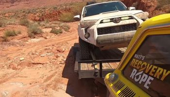 Toyota 4Runner Recovery Turns Into A Pet Rescue.